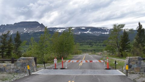 Montana Is Open, But For Now The Blackfeet Nation Is Closed