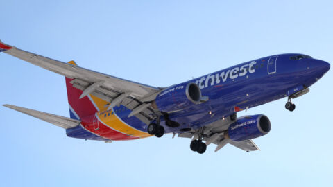 Southwest Airlines Grapples With Another Outage, Halting Flights