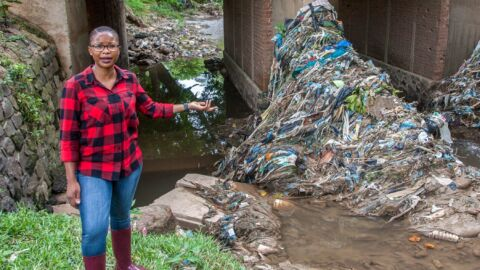 She Owes Her Big Environmental Prize To Goats Eating Plastic Bags