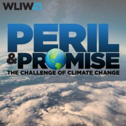 Peril and Promise