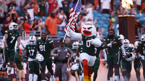 A Cat — In A Miami Football Stadium For Some Reason — Dangles, Falls And Survives