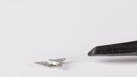 Flying Microchips The Size Of A Sand Grain Could Be Used For Population Surveillance