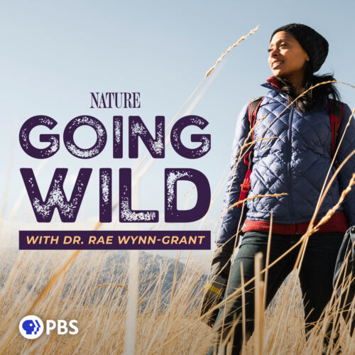 Going Wild with Dr. Rae Wynn-Grant