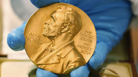 The Nobel Prize in physics honors work on climate change and complex systems