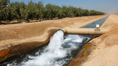 Satellites reveal the secrets of water-guzzling farms in California