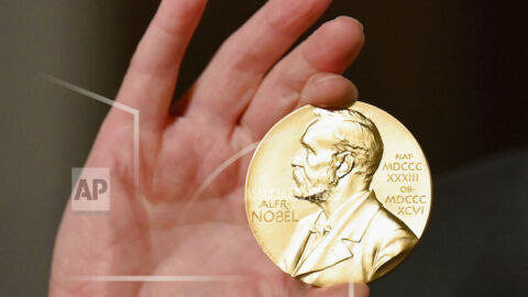Two scientists win Nobel Prize in chemistry for new way of building molecules