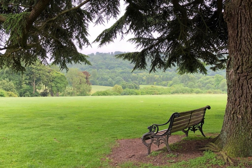 A view of our own of the Highclere Castle grounds.